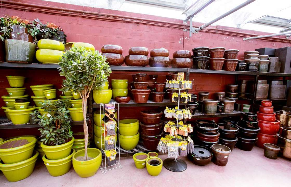 Colourful pots and containers