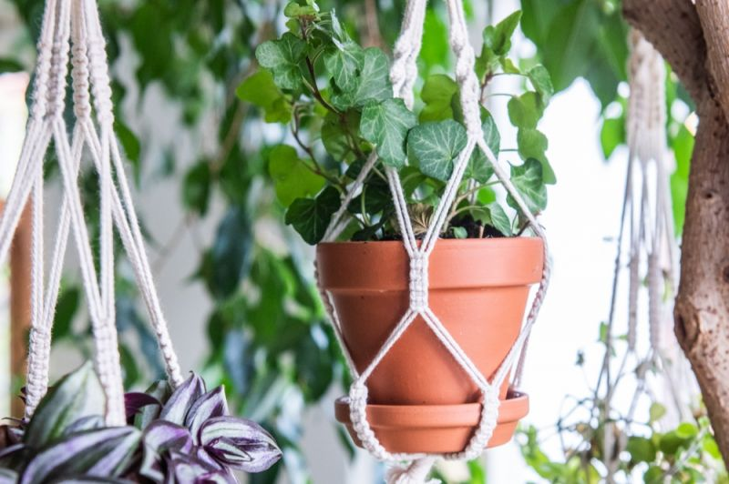Make Your Own Plant Hangers